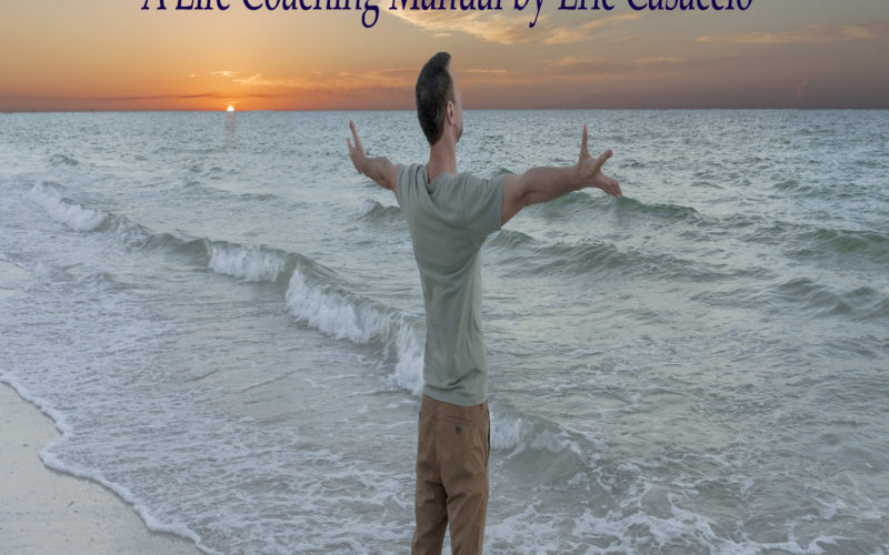 The Empowerment From Narcissistic Situations Life Coaching Manual is Now Available!